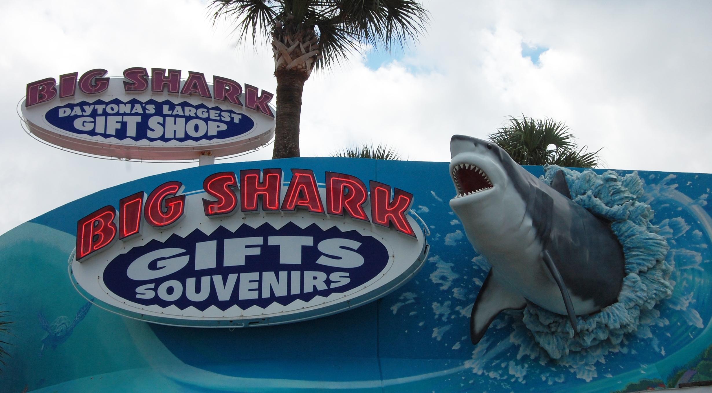 big shark2